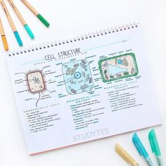 biology notes 16 Breathtaking Class Notes Thatll Make Any Student Want To Take An Art Class ASAP Biology Revision, Revision Notes, Study Notes, Science Revision, Gcse Science, Gcse Revision, Cute Notes, Pretty Notes, Good Notes