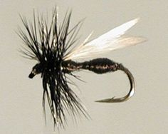 12 Pack Trout Dry Fly Black Ant Variant Size 16