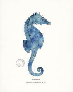 Coastal Decor Art Print  Antique Sea Horse by vintagebytheshore,