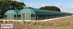 Mobile Poultry House | Design Polytunnel for Birds | Mcgregor Polytunnel