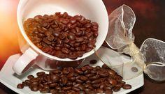 ¿Amante del café? Visite Tarrazú este fin de semana
