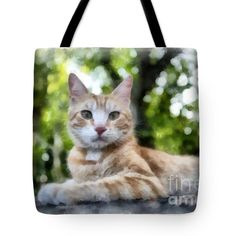 Volterra Italy Cat Watercolor Tote Bag by Edward Fielding