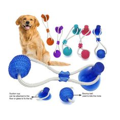 Multifunction Pet Molar Bite Toy Interactive fun Pet toy with suction cup dog push toy with TPR ball Pet Tooth Cleaning,Chewing Dog Harness, Dog Leash, Push Toys, Dog Furniture, Dog Clothes Patterns, Toy Puppies, Pet Clothes, Dog Clothing, Rubber Material