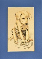 Items for sale by Carrie, Dogs, Animals, Shopping, Image, Ebay, Animales, Animaux, Doggies