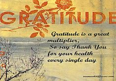 Gratitude is a great multiplier So say Thank you for your health every single day http://aromaoildiffusers.com/AromaDiffusers/