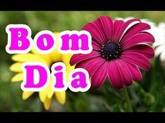 Bom Dia Com Flores    Mensagem - YouTube
