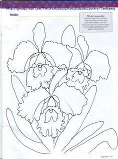 pintura Orquideas - elizete carmen silva - Álbumes web de Picasa