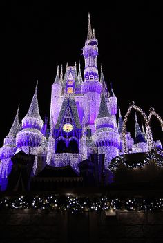 Disneyworld Castle at Christmas time. Sorta brings a tear to my eye.