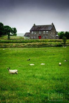 Countryside, County Kerry, Ireland.