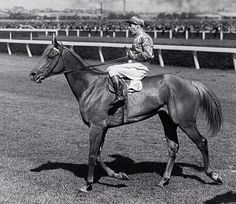 Peter Pan, won Melbourne Cup 1932 and 1934.