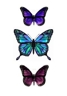 butterfly - Land of Tattoos Purple Butterfly Tattoo, Butterfly Drawing, Butterfly Fairy, Butterfly Painting, Butterfly Wallpaper, Butterfly Kisses, Tattoos Skull, Key Tattoos, Ribbon Tattoos
