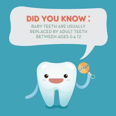 Can you remember when you started to get your first adult tooth? Was it one of your front teeth?