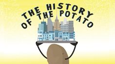View full lesson: http://ed.ted.com/lessons/history-through-the-eyes-of-the-potato-leo-bear-mcguinness Baked or fried, boiled or roasted, as chips or fries; ...