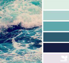Color sea || design seeds bloglovin' **verified**