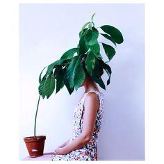 Eva Jonsson (@stilsamt) • Instagram photos and videos - faceless portrait: plant: people hiding in bushes