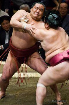 Sumo wrestlers grapple at the Ryogoku stadium in Tokyo, Japan.