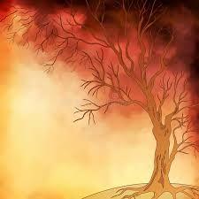 Sonhando, escrevendo e imaginando: Quando as folhas caem na Primavera