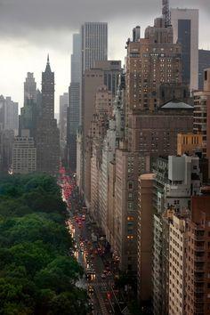 New York by dorothy
