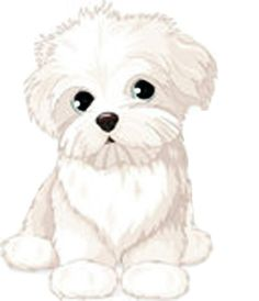 fluffy clipart fluffy dog 1300 938 sevimli desenler pinterest clip art image. Black Bedroom Furniture Sets. Home Design Ideas