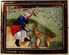 Woman binding Reeds. detail Flemish c. 1440. bodl_Rawl.