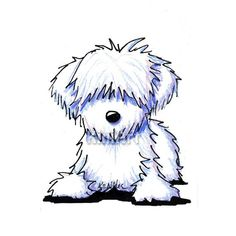 Original Art White Havanese Dog ACEO Ebsq by KiniArt on Etsy, $40.00