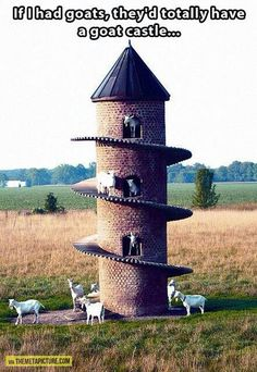 I feel so bad... I HAD goats and I didn't know of such things as goat castles!