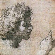 Raffaello Santi (Raffael) - Studies of a Man's Head and Hand