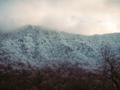 """""""TENNESSEE"""" by Jessica Pegg on Exposure"""