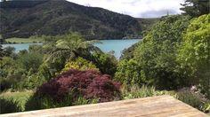 Waitaria Bay Beauty