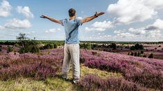 Die Lüneburger Heide - eine der schönsten Urlaubsregionen Niedersachsens. Finde jetzt die schönsten Ausflugsziele, Veranstaltungshighlights und Hoteltipps. Heide Park, Khaki Pants, Lower Saxony, Road Trip Destinations, Destinations, Vacation, Khakis, Trousers