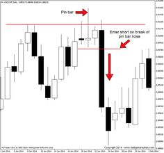 Pin Bar Trading Course | Daily Price Action
