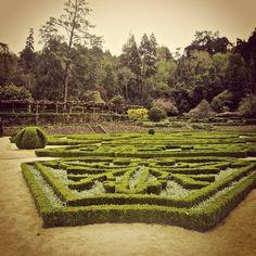Gardens of Hotel Palácio do Bussaco #buçaco #bussaco #portugal #natureandart #travel #heritage #themahotels #nature #garden #thermalwaters