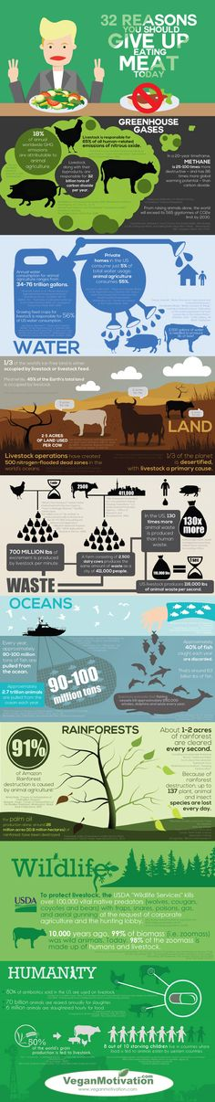 This compelling infographic shows why animal agriculture is the biggest threat to our planet and why people should stop eating meat.