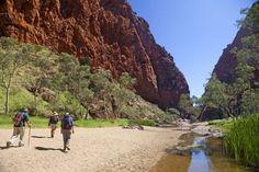 Larapinta trail, NT.