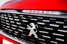 Peugeot 308 R Concept grille pattern
