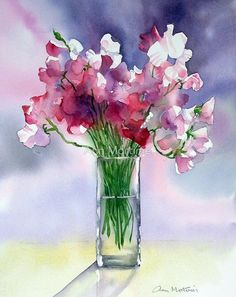 Impression Sweet Peas by Ann Mortimer Watercolor Paintings For Beginners, Watercolor Pictures, Watercolor Cards, Watercolor Flowers, Watercolour Painting, Painting & Drawing, Watercolours, Art Floral, Cuadros Diy