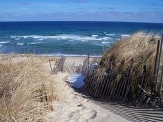 Wellfleet beaches