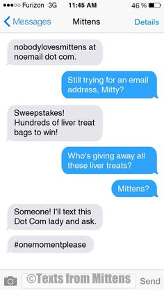 NEW Daily Mittens: The Dot Com Edition More Mittens: http://textsfrommittens.com/  Order the Mittens book: http://www.amazon.com/Texts-From-Mittens-Unlimited-Afraid/dp/0373893221