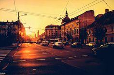 Love of my life. Cluj - Napoca, Cluj