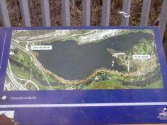 Estupenda ruta circular de 4.8 km con bancos, postas para ver aves, centro de interpretación de flora y fauna y para hacer footing, cycling,...