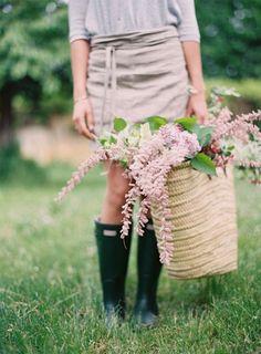 Flowers of the garden.