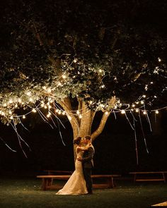 Monks' Barn on Instagram • Photos and Videos Some Image, Wedding In The Woods, Fairy Lights, Professional Photographer, Lanterns, Wedding Lighting, Photo And Video, Barn, Beautiful