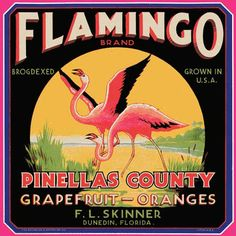 Dunedin Pinellas Florida Flamingo Bird Orange Citrus Fruit Crate Label Art Print in Labels Vintage Labels, Vintage Ads, Vintage Posters, Retro Ads, Vintage Signs, Vintage Florida, Flamingo Art, Pink Flamingos, Flamingo Outfit