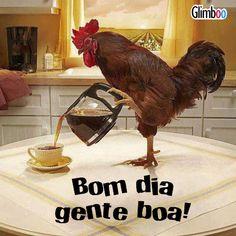 Galo servindo café e dizendo: Bom dia gente boa!