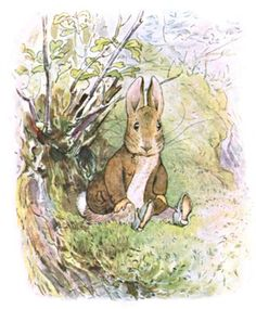 I love everything from Beatrix Potter, but little Peter Rabbit the most♥