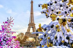 Christmas in Paris is an elegant, low-key affair focusing on food, family, and community.