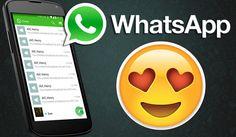 WhatsApp Logo Oficial
