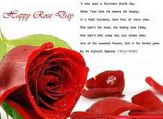 White Pink and Red Rose Images for Rose Day in Valentine week   Happy Valentine Day 2015