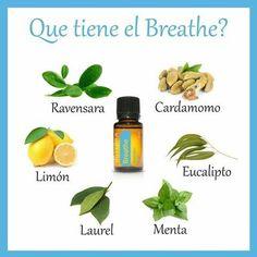 Qué tiene el Breathe?