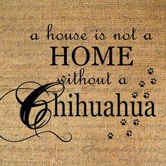 HOME wo CHIHUAHUA Text Word Calligraphy Digital Image Download Sheet Transfer To Pillows Totes Tea Towels Burlap No. 4632
